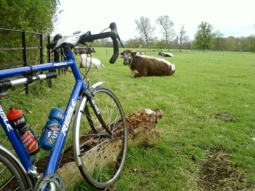 Wimpole is a fantastic visit by cycle